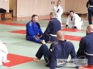 BJJ Seminar_3