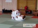 BJJ Seminar_4