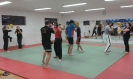Training MMA_2